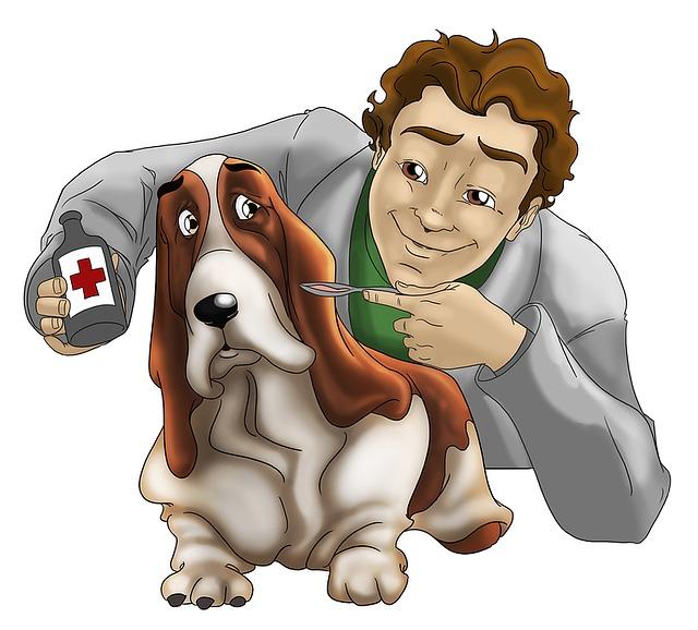 Tierarzt Hund skeptisch